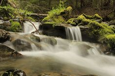 Winning reader photos of Washington's national parks | Picture This | The Seattle Times
