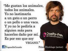 200 Ideas De Veganos Veganos Derechos De Los Animales Frases Veganas