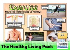 Help your children to make healthy choices with our pack of teaching resources. Includes a topic guide to discuss with your class, a range of activity resources and display materials to enhance the learning environment. Science Curriculum, Science Resources, Teaching Resources, Activities, Bone Strength, Muscles In Your Body, Do Exercise, Learning Environments, Healthy Choices