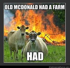 We have collected few very funny animals memes, we hope you will enjoy them a lot, feel free to share the best one's with your friends and keep enjoy.Read This Top 26 Animals Humor memes Funny Animal Memes, Funny Animal Pictures, Funny Photos, Funny Animals, Funny Jokes, Meme Pics, Farm Animals, Funny Images, Funny Sayings