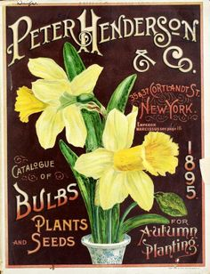 1895 Peter Henderson & Co - Henderson's - Catalogue of Bulbs Plants and Seeds for Autumn Planting