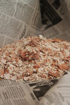 Recycling Your Chicken's Eggshells