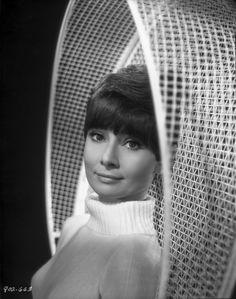 "Bud Fraker Audrey Hepburn ""Wait Until Dark"" 1967 Carole Lombard, Art Photography Portrait, Artistic Photography, Vintage Photography, Elvis Presley, Beautiful Lips, Beautiful Women, Beautiful Places, Roman Holiday"