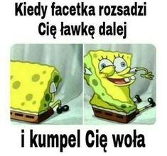 Avatar Ang, Funny Lyrics, Polish Memes, Weekend Humor, Aesthetic Memes, Funny Mems, Meme Lord, School Memes, Mood Pics