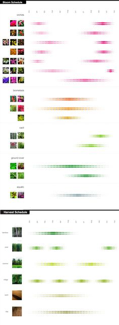 Bloom Time. Marisa Bernstein. ASLA student award. http://datadesign.files.wordpress.com/2011/01/321_13.jpg