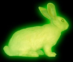 Nuclear - Animals What's New - Radioactive rabbit found on Handford nuclear site Arte Punk, Theme Nature, Cybergoth, Black Ops, The Villain, Neon Green, Red Purple, Blue Yellow, Pink White