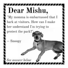 My momma is embarrassed that I bark at visitors. How can I make her understand I'm trying to protect the pack? -- Snoopy