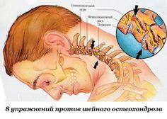 Eight exercises against cervical degenerative disc disease / Health Alphabet