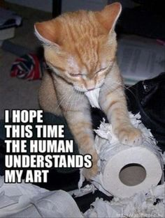 Cat's art   Click for more Funny Pictures --> http://www.funnypicshub.com