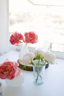 Pretty peonies, in pink and white