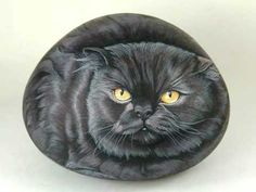 Pietre vive sassi dipinti - YouTube