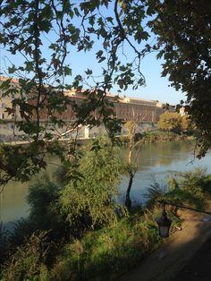 Walking along the beautiful Tevere - Roma