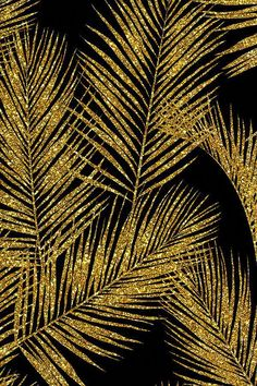 Colorful fabrics digitally printed by Spoonflower - gold glitter palm leaves - black, large. silhuettes faux gold imitation tropical forest black background hot summer palm plant leaves shimmering metal effect texture fabric wallpaper giftwrap Iphone Wallpaper Rose Gold, Wallpaper Free, Trendy Wallpaper, Fabric Wallpaper, Cute Wallpapers, Gold And Black Background, Pink Glitter Background, Gold And Black Wallpaper, Black Glitter Wallpapers