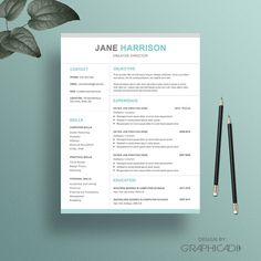 Professional Resume Templates  PsdWordIndesignDocPdf
