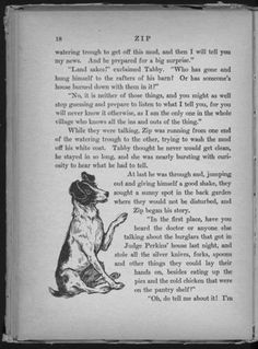 Zip  The Adventures of a Frisky Fox Terrier  Author - Frances Trego Montgomery  Illustrator - Violet Moore Higgins