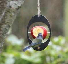 Bird Feeder #homesfornature