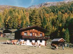 Hirschenbauerhütte Heiligenblut Hohe Tauern