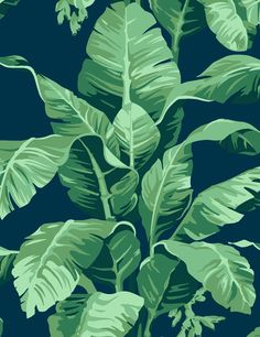 Pacifico Palm Indigo by Nathan Turner