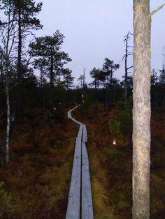 Hatlamminsuo, Riihimäki