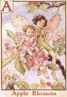 A = Apple Blossom. Cicely Mary Barker's Flower Fairies of the Alphabet