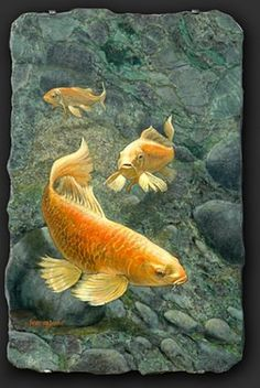 This rare granite has a glass like texture that allows for a 3-D effect.  It makes the rocks appear to be behind the Koi. Information at B & R Gallery.