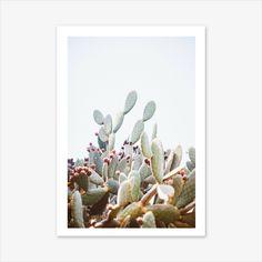 Cactus Print, Desert Print, Desert Decor, Nature Prints, Succulents and Cacti, Desert Landscape, Rustic Home Decor, Bohemian Decor, Wall Art #homedecorideas #homedecoronabudget #homedecordiy #homedecorideasmodern #homeoffice #homedecor #homeideas #wallart #walldecor #wallartdiy #art #print #digital #succulentsandcacti #wallartcacti #cactiset #cactusprint #cactusplant #desertprint