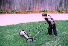 Go green this summer with these tips for eco-friendly lawn and garden care. Green Tips, Go Green, Lawn And Garden, Water Garden, Reel Lawn Mower, Rotary Mower, Future Jobs, Garden Care, Fun Activities For Kids