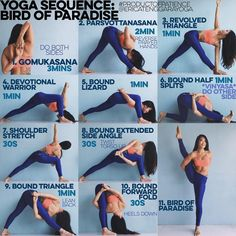 YOGA SEQUENCE: BIRD OF PARADISE Warm up: Sun Salutation A&B x5 each YouTube if unsure 1. GOMUKASANA The secret to not feeling like your shoulder is going to dislocate in a bind is Gomukasana & reverse prayer the 3 mins is going to feel like shit, I understand I'm with you but trust me that everything is going to be ok 2. PARSVOTTANASANA Don't forget the prayer hands k? if it jacks up your wrists just hold onto opposite elbows, I've put the two shittiest parts of the sequence up first so ...