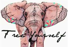 ☮ American Hippie Indian Elephant Psychedelic Art Quotes ~ Free Yourself