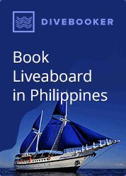 Save money on liveaboard diving in the Philippines