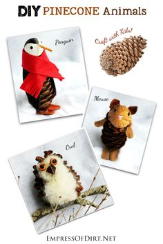 DIY Pinecone Animals: Make a penguin, owl, and mouse from natural materials.  Pinned by www.myowlbarn.com