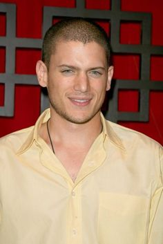 Wentworth Miller Picture 47