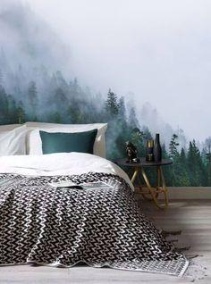 Wallpaper: Rain forest morning fog wallpaper  trees misty mural  wall