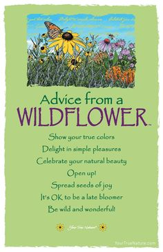 Advice from a Wildflower Frameable Art Card – Your True Nature, Inc. Advice Quotes, Me Quotes, Advice Cards, Wild Flower Quotes, Butterfly Quotes, Garden Quotes, True Nature, Nature Quotes, Spirit Guides