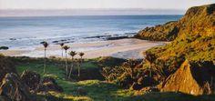 Te Hapu - boende nya zeeland