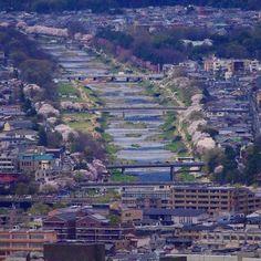 #Киото #река #Камогава #пороги Хорошая точка съёмки на склоне восточных гор Хигасияма - весь город как на ладони но нужна дальнобойная оптика со штативом :) #точкисъёмки #телескоп #весна #сакура #фото #фотография #пейзажи #виды #Япония #фототур #фототуры