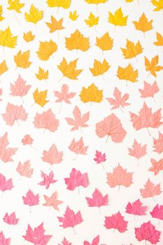 Ombre Leaf Backdrop Leaves Changing Color, Party Scene, Autumn Cozy, Borders And Frames, Autumn Crafts, Wax Paper, Diy Crochet, Crafts To Do, Happy Day