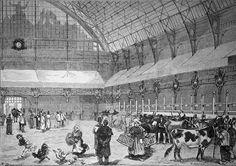 Paris - Concous agricoles du palais de l'industrie, février 1879