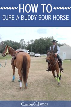 Here's a horse training tip that will teach you how to naturally cure a buddy sour horse. This seems to be a common problem among horses and this horse training exercise will show you how to nip it in the bud.