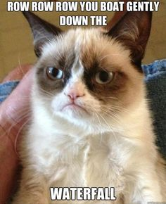 Google Image Result for http://www.dumpaday.com/wp-content/uploads/2013/01/grumpy-cat-row-row-row-your-boat-funny-pictures.jpg