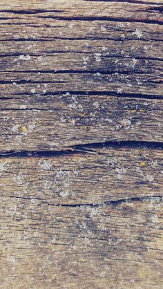 freeios8.com - vj32-wood-art-nature-pattern-blue - http://bit.ly/1Ps9zQN - iPhone, iPad, iOS8, Parallax wallpapers