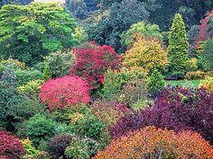 Crathes Castle Gardens in October