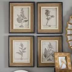 One Allium Way Ladouceur 4 Piece Framed Graphic Art Set Wood Interior Design, Rustic Design, Interior Decorating, Farmhouse Wall Art, A Frame Cabin, Botanical Prints, Painting Frames, Picture Frames, Framed Prints