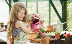 Полный Апельсин: описание, посадка, выращивание в домашних условиях, размножение и уход +Отзывы Check more at https://krrot.net/apelsin-v-domashnix-ysloviyax/