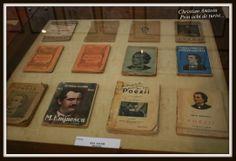 An expo dedicated to Romania's most famous poet... http://prinochideturist.wordpress.com/2013/07/08/expozitie-tematica-in-onoarea-lui-mihai-eminescu-themed-expozition-in-honor-of-mihai-eminescu/