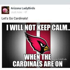 I will not keep calm when the Cardinals are on! Arizona Cardinals super fans! #NFL #AZLadyBirds