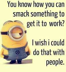 Funny Minion Pictures Below are some very funny minions memes, and funny quotes, i hope you will enjoy them at your best . and why not whatever minions do they always look funny and stupid . So make sure to share the best minions with your friends . Funny Minion Memes, Minions Quotes, Minion Sayings, Minion Humor, Minions Pics, Minions Images, Cute Minion Quotes, Evil Minions, Cartoon Quotes