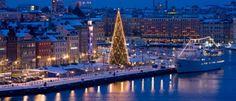 Gli alberi di Natale tradizionali più belli del mondo: una gara vera e propria!