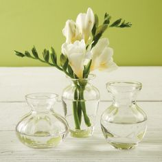 Two's Company Fluted Trio Set of 3 Bud Vases In Gift Box Includes 3 Shapes - Hand-Blown Glass – Modish Store