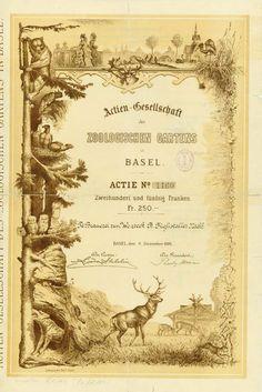 Aktie der Actien-Gesellschaft des Zoologischen Gartens in Basel